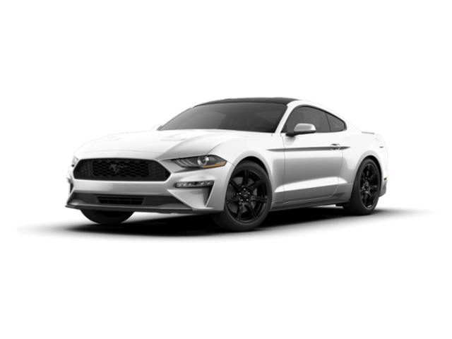 2019 Ford Mustang Ecoboost Coupe for sale near Prague, OK
